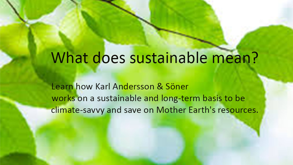 Sustainable Karl Andersson Söner